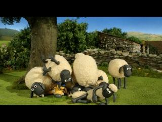 Shaun the Sheep \ ������� ��� 2 ����� 7 ����� - Hair Today, Gone Tomorrow
